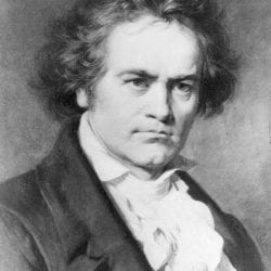 Who Will Perform My Treatment? - Beethoven_wiki 250x250